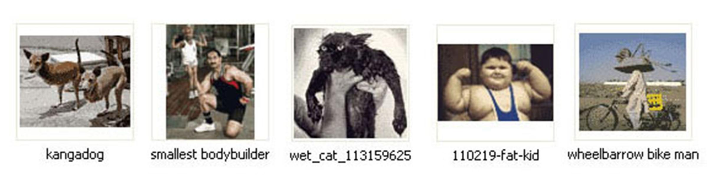 5 internet images